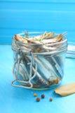 Salted sprat (fish) Stock Photos