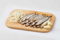 Salted sprats on cutting board with fresh onion. Salted sprats on cutting board isolated on white Royalty Free Stock Images