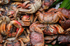 Salted and steamed crab Royalty Free Stock Photos