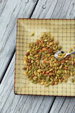 Salted sunflower seeds on patterned plate Stock Photos
