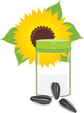 Salted sunflower seeds. Salt shaker and sunflower seeds. Illustration Royalty Free Stock Image