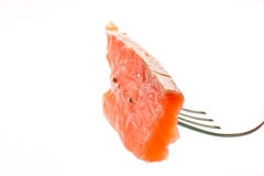 Salted trout Stock Photos