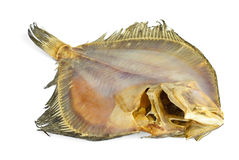 Salted turbot flatfish Royalty Free Stock Photo