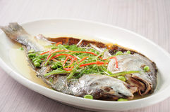 Salted yellow croaker with chicken sauce Stock Image
