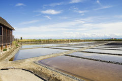 Saltern of Cervia stock images