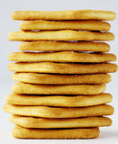 Saltine crackers  Royalty Free Stock Images