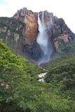 Salto ängel, Venezuela Arkivbilder