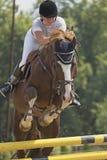 Salto agradable con el caballo Fotos de archivo