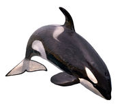 Salto aislado de la orca Fotos de archivo libres de regalías