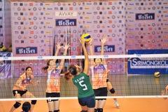 Salto alto a atacar no chaleng dos jogadores de voleibol Imagem de Stock