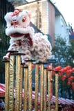 Salto chino de la demostración del león. Foto de archivo libre de regalías