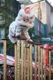 Salto chino de la demostración del león. Imagen de archivo