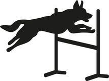 Salto da agilidade do cão ilustração royalty free