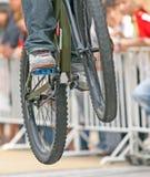 Salto da bicicleta de montanha Imagens de Stock Royalty Free