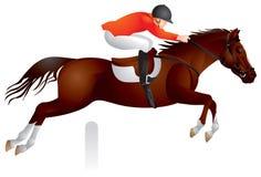 Salto da mostra do cavalo Imagens de Stock Royalty Free