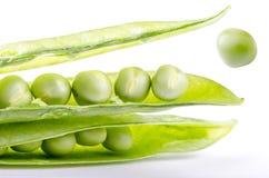 Salto das sementes de ervilha verde Imagens de Stock Royalty Free
