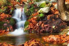 Salto de água perto do monastério de Valvanera´s Foto de Stock Royalty Free