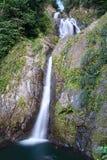 Salto de Dona Juana Waterfall, Orocovis, Porto Rico Imagem de Stock Royalty Free