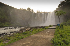 Salto de Eyipantla in Mexico. One of the biggest waterfalls in the country, in the state of Veracruz, 12km from Catemaco Royalty Free Stock Image