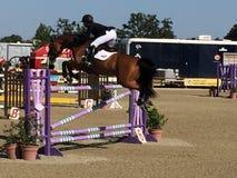 Salto de Grand Prix del cwd del parque del caballo de Paso Robles Imagen de archivo