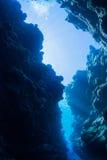 Salto de la cueva imagen de archivo libre de regalías