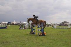 Salto de la demostración del caballo foto de archivo
