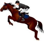 Salto de la demostración del caballo Fotos de archivo libres de regalías