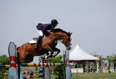 Salto de la demostración del caballo fotografía de archivo