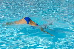 Salto de la mujer en la piscina Natación hermosa joven de la muchacha en piscina Relajación morena en agua caliente clara el día  imagen de archivo
