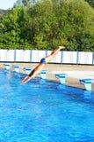 Salto de la nadada Imagen de archivo