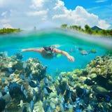 Salto de Snorkeler a lo largo del arrecife de coral hermoso Foto de archivo