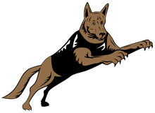 Salto del cane di polizia Immagini Stock