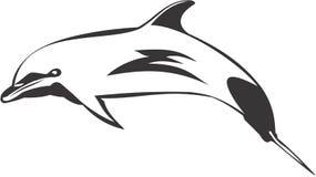 Salto del delfín de Bottlenose Imagenes de archivo