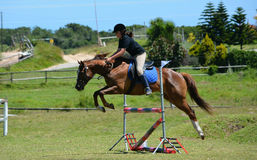 Salto del jinete de lomo de caballo Foto de archivo