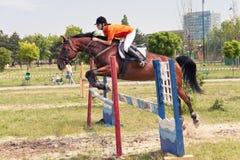 Salto del jinete y del caballo Foto de archivo