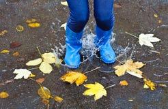 Salto del otoño fotos de archivo