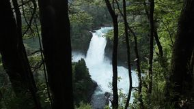 Salto del Puma Waterfall, Chile. Salto del Puma waterfall, located in the Huilo-Huilo Biological Reserve in southern Chile`s Lakes District stock video footage