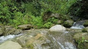 Salto del río del perro metrajes