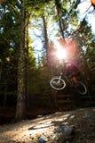 Salto della bici di montagna Immagini Stock Libere da Diritti