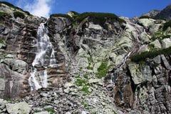 Salto della cascata Immagine Stock