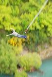 Salto di Bungy fuori dal ponticello di Kawarau Immagine Stock Libera da Diritti