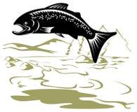 Salto di color salmone Fotografie Stock
