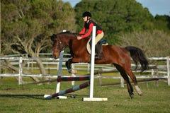 Salto di manifestazione della ragazza e del cavallo Immagine Stock