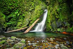 Salto do Cagarrao Waterfall, Sao Miguel Island, Azores, Portugal Stock Image