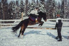 Salto do passeio do cavalo do salto do inverno Fotos de Stock