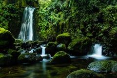 Salto do Prego in het eiland van Saomiguel, de Azoren royalty-vrije stock afbeeldingen