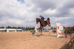 Salto ecuestre de la acción de la demostración del caballo Imagen de archivo