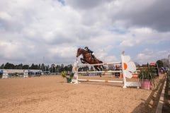 Salto ecuestre de la acción de la demostración del caballo Fotografía de archivo libre de regalías