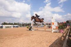 Salto ecuestre de la acción de la demostración del caballo Foto de archivo