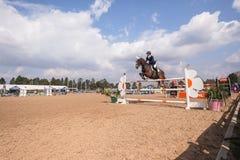Salto ecuestre de la demostración del caballo Imagen de archivo